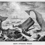 Hawthorne, Melville, and Basia Bulat